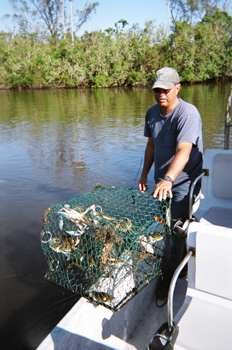 Everglades fishing the premier online guide for Everglades fishing guide
